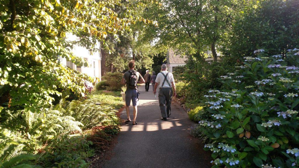 two people walking down a garden path