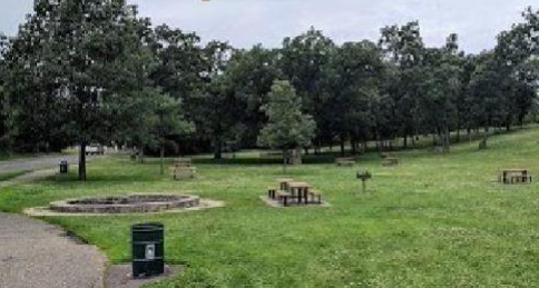 Photo showing a view of the Como Park fire circle with seating in a grassy area with picnic tables nearby, St. Paul, MN.
