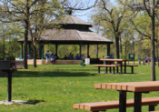 Image shows a gathering of people at a hexagonal gazebo picnic shelter at Como Park near trees, grass, picnic tables and grills.